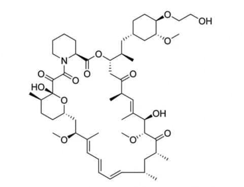 еверолимус (everolimus) | ATC L01XE10