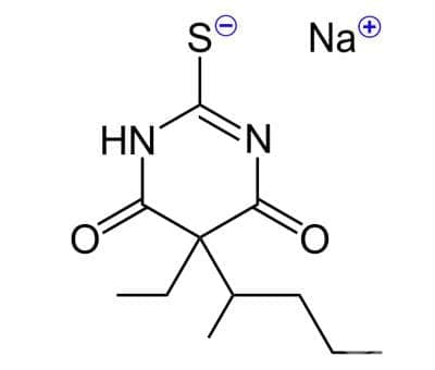 тиопентал (thiopental) | ATC N05CA19 - изображение