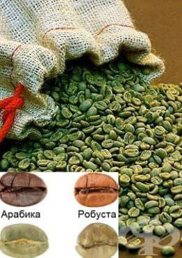 Зелено кафе - изображение