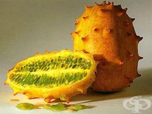 Африканска краставица, кивано, африкански бодлив пъпеш, бодлива краставица - изображение