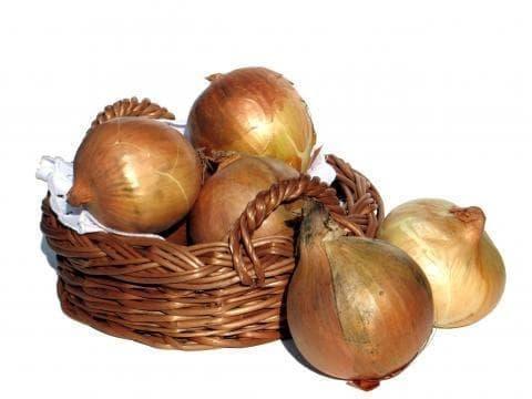 Лук кромид - изображение