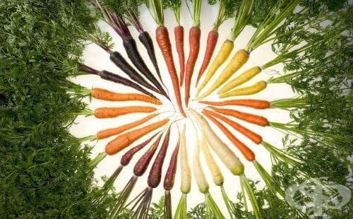 Морков - изображение