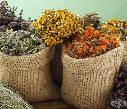 Опаковане и съхранение на билки - изображение