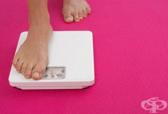 Дори загуба на 5% от телесната маса подобрява здравето - изображение