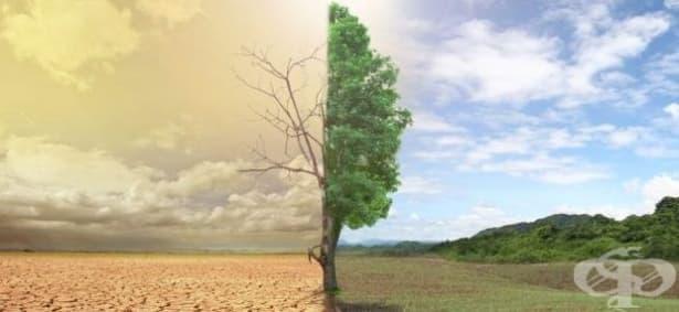 Учени прогнозират ново явление - климатични бежанци - изображение