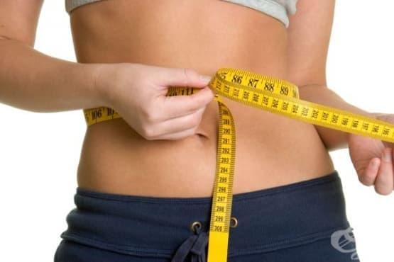Здравословното отслабване е не повече от 1,5 кг на месец - изображение
