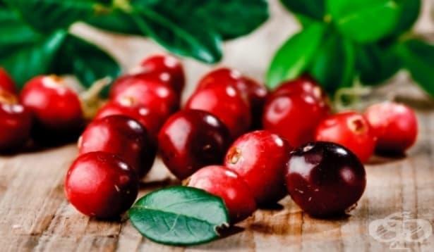 Червените боровинки помагат в борбата с отслабването - изображение