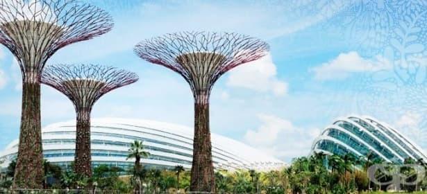 Американски инженери ще разработват структури, подобни на дървета, които ще събират енергия от вятъра - изображение