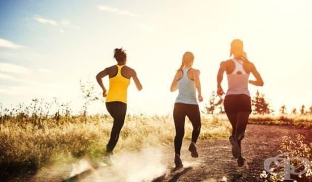 Тялото не може да отслабне повече от 30% само със спорт, независимо от натоварването - изображение