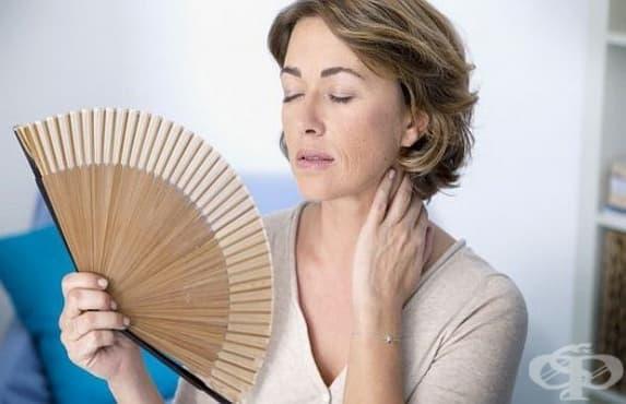 Храна, богата на витамин D, защитава от ранна менопауза - изображение