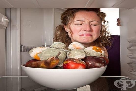 Микотоксини от плесенясали храни могат да бъда открити и по тапетите - изображение