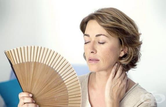 Специалисти са открили лесен начин за отлагане на менопаузата - изображение