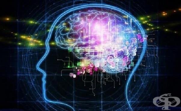 Паметта ни е силна или слаба в определени сезони - изображение