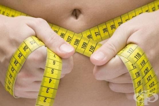 5 мита за затлъстяването, в които продължаваме да вярваме - изображение