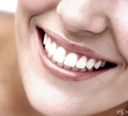 Прополис за здрави зъби - изображение