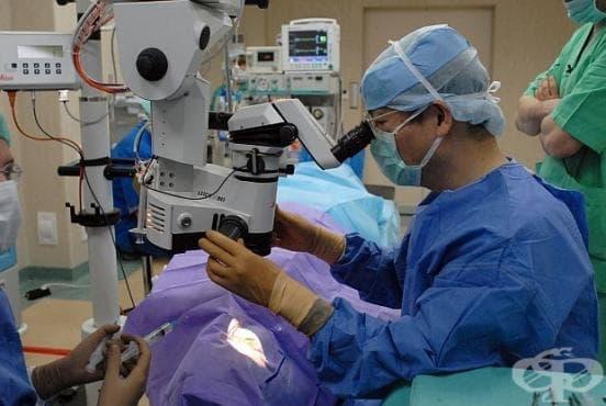 Шведските лекари вече успешно присаждат вени, отгледани от стволови клетки на пациента - изображение