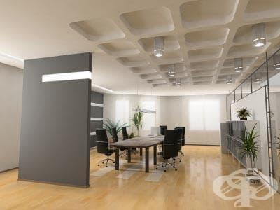 Фън шуй - пръв приятел в офиса - изображение