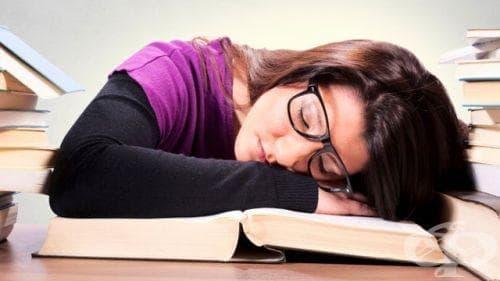 Сънят след лекции помага да запомним получените знания - изображение