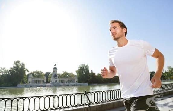 Най-добрият фитнес за ума са аеробните упражнения - изображение