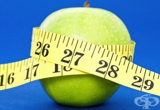 Ако искате да отслабнете, ключът е в ограничените калории, не във фитнеса - изображение