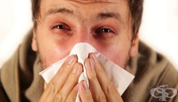 Симптоми, по които можете да разпознаете някои алергии - изображение