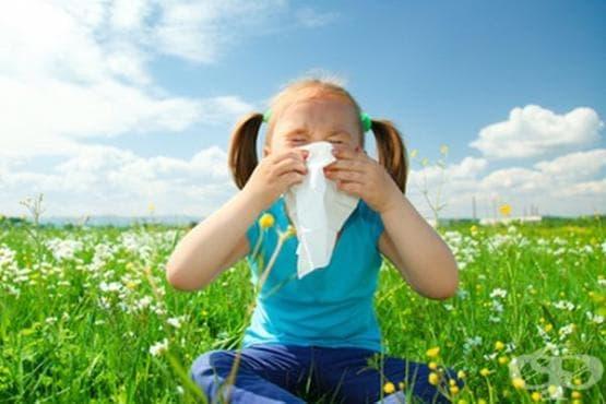Сезонът на раждане може да предопредели риска от алергии - изображение