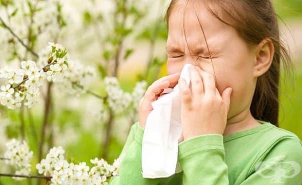 Децата с алергии по-рядко развиват усложнен апендицит - изображение