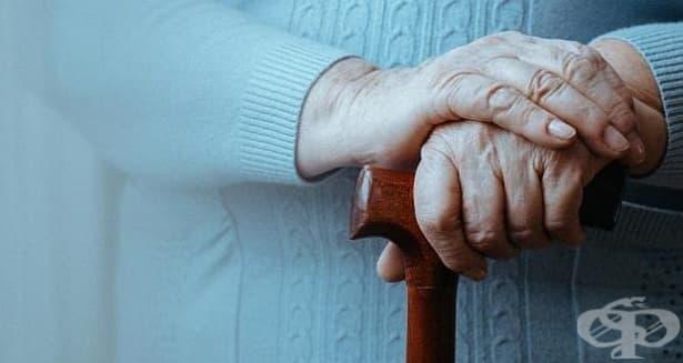 Болестта на Паркинсон е по-разпространена при хора без апендикс - изображение