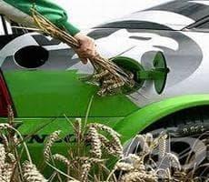 Биогоривата не са непременно най-екологични - изображение