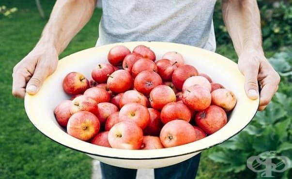 Биохрани срещу обикновени храни – каква е истината за полезните вещества в тях - изображение