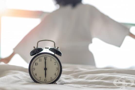 Проучване показва, че биологичният часовник влияе върху ефективността на имунния отговор - изображение