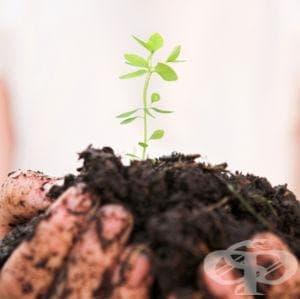 Във Видин беше представен проект за стимулиране на биологичното земеделие - изображение