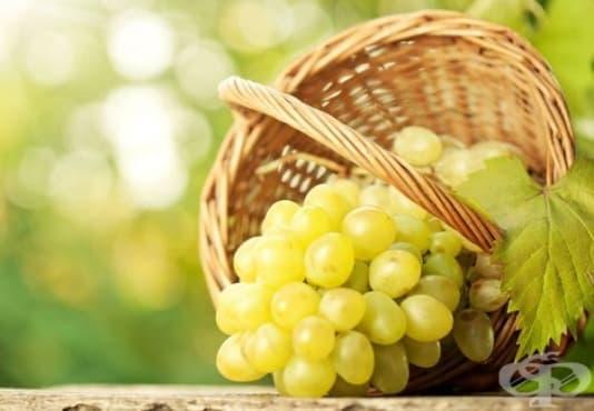 Бялото грозде защитава от рак на кожата - изображение