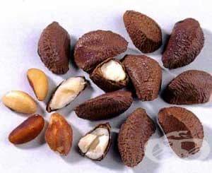 Бразилски орех бори излишните килограми - изображение
