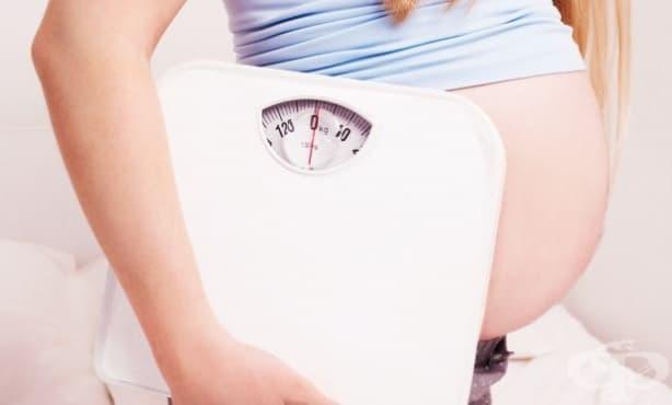 Бременната не трябва да е с наднормено тегло, защото се повишава риска детето да е епилептик - изображение