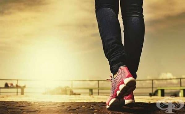Бързото ходене е предпоставка за дълъг живот - изображение