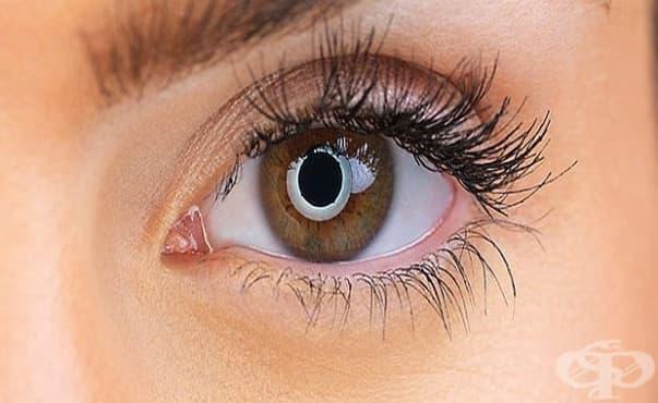 Пиенето на горещ чай може да намали риска от глаукома - изображение