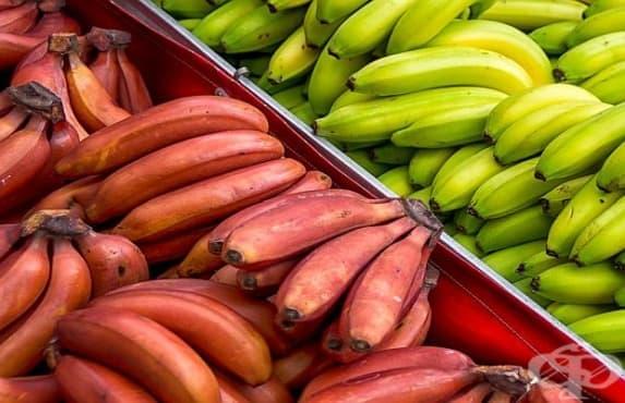 Червени банани подобряват сърдечносъдовата система, здравето на очите и кожата - изображение