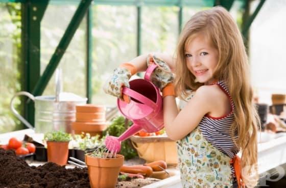 Децата могат да се преборят с наднорменото тегло чрез градинарството - изображение
