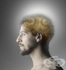 Признак на деменция ли е честото забравяне? - изображение