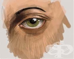Диагноза по лицето - изображение