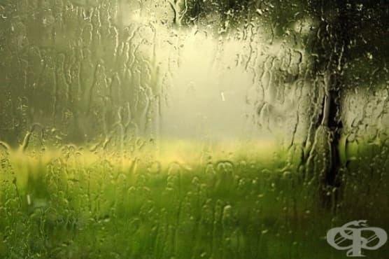Дъждовното време оказва негативно влияние върху здравето - изображение