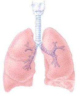 Епидемия от нелечима туберкулоза грози Китай - изображение
