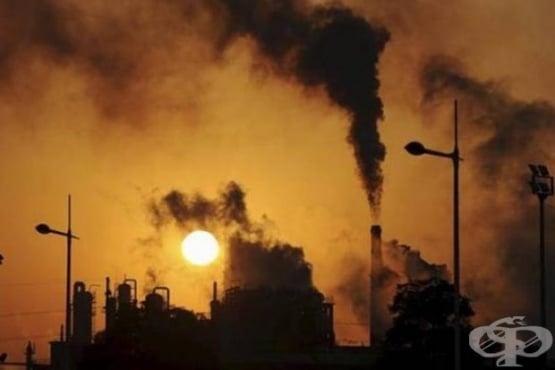 Проучване открива връзка между замърсяването на въздуха и епилептичните припадъци - изображение