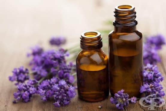 Съединение в етеричните масла ускорява значително зарастването на кожни наранявания - изображение