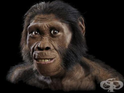 Гените на неандерталците са укрепили имунитета ни - изображение