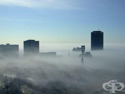 Проучване откри връзка между хипертонията и замърсяването на въздуха - изображение