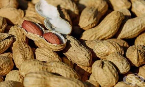 Според ново проучване имунотерапията за алергия към фъстъци осигурява защита, но не и лек - изображение