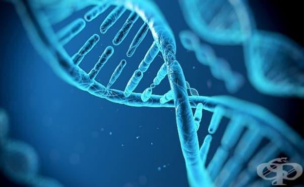 Животът е започнал с метаболизма, а след това с копирането на гени - изображение