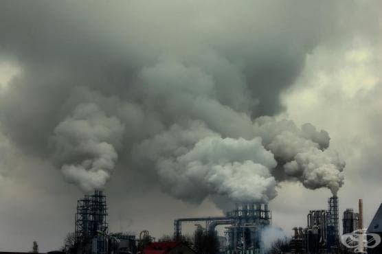 Отровните химикали във водата, храната и въздуха са причина за милиони смъртни случаи - изображение